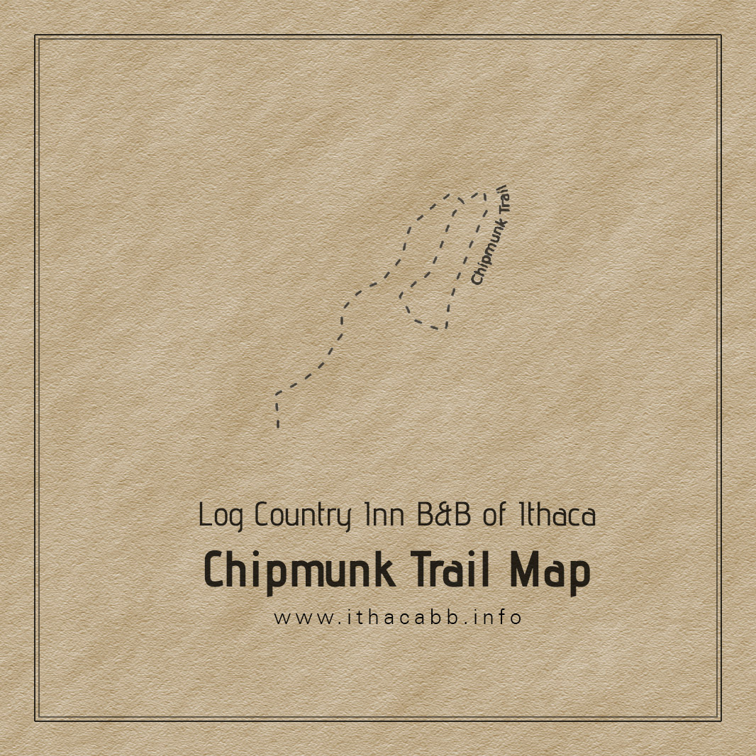 Log Country Inn B&B of Ithaca - Chipmunk Trail